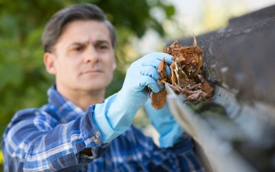 How To Clean Gutters in 6 Easy Steps